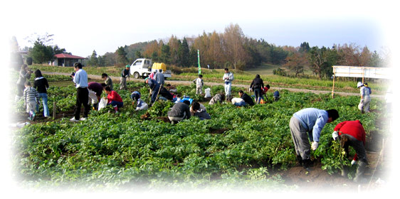 とやまスローライフ市民農園